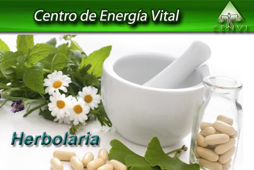 Temario Herbolaria en tu cocina