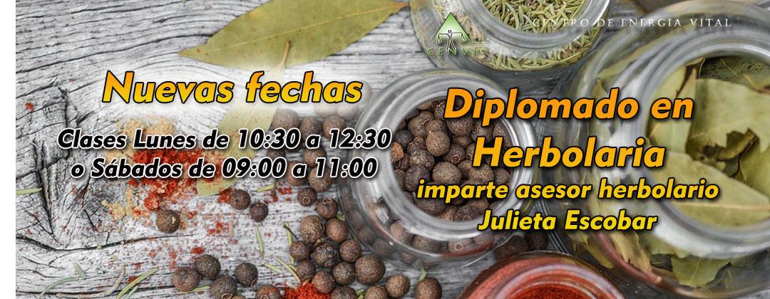 http://www.cenvi.mx/diplomado-en-herbolaria/